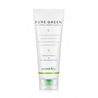 Pure Green Pure Green AC Control Cleansing Foam